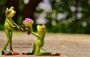 kwiaty-walentynki